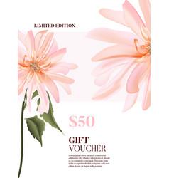watercolor realistic tender rose pink dahlia vector image