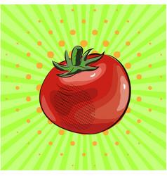 tomato vegetable pop art food eco vector image vector image