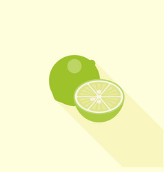 lime and half piece of lime icon flat design vector image