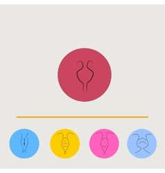 Art drawing set of uterus icon vector