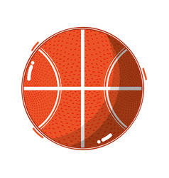 basketball ball to training play game sport vector image