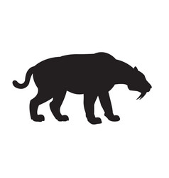 Black silhouette saber-toothed tiger vector