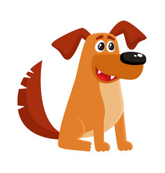brown funny house dog puppy character sitting vector image