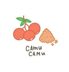 Camu powder superfood vector
