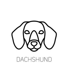 Dachshund linear face icon isolated outline dog vector ...