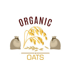 Oat cereal poster or emblem vector