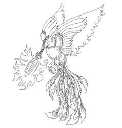 phoenix fire bird vector image