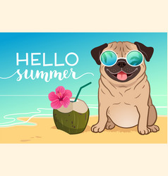 Pug dog wearing reflective sunglasses on a sandy vector