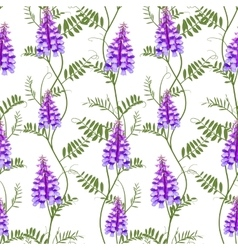 Seamless pattern wildflowers bindweed bird vetch vector image