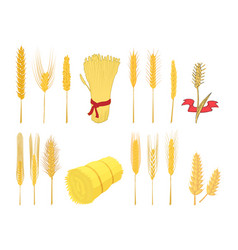 Wheat icon set cartoon style vector