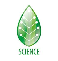 chip logo in green leaf vector image vector image