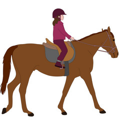 child riding a horsecolor vector image
