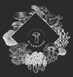 hand drawn mushroom design template on chalk vector image