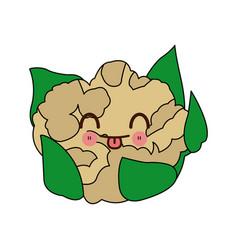 kawaii cauliflower with leaves vegetable cartoon vector image