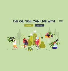 People using olive oil for beauty care and cooking vector