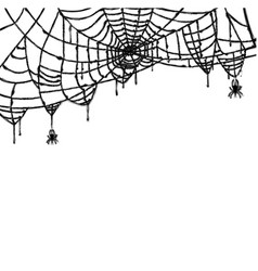 Spider and web isolated on white background vector