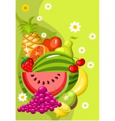 summer fruit vector image
