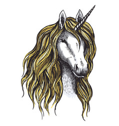 unicorn horse mystic magic animal sketch vector image