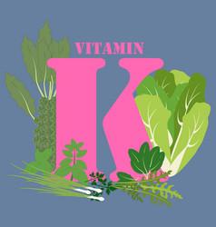 Vitamin k healthy nutrient rich food vector