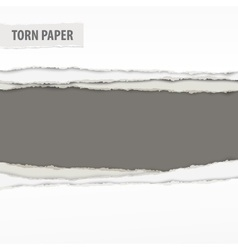 Torn paper pieces on grey vector image vector image