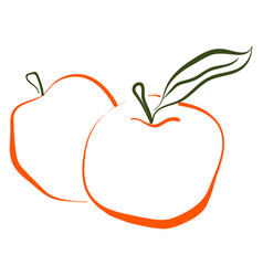 apple drawing on white background vector image