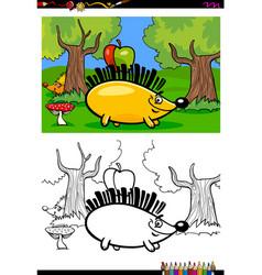 cartoon hedgehog character coloring book vector image