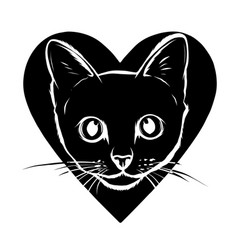 cat spotted striped head symmetrical vector image
