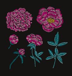 decorative peonies set vector image