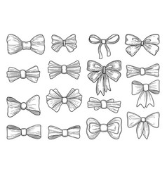 hand drawn bow fashion tie bows accessories vector image