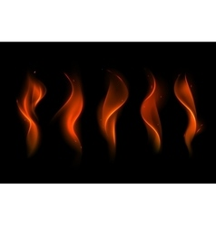 Set of Different Red Scarlet Fire Flame vector image