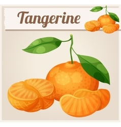 Tangerine fruit Mandarin Cartoon icon vector