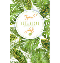 tropical vertical banner vector image