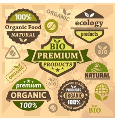 ecology and bio labels vector image