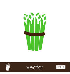 asparagus outline icon vegetable vector image