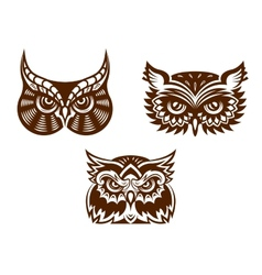 Collection of wise old owl faces vector
