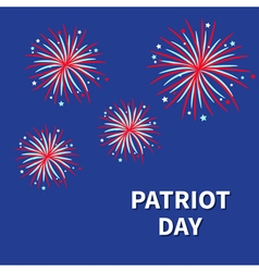 Patriot day Fireworks night sky Star and strip vector