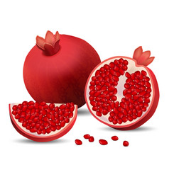 Pomegranate juice seeds icons set realistic style vector