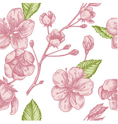 seamless pattern with hand drawn pastel sakura vector image