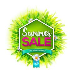 summer sale label vector image