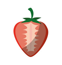 isolated sweet strawberry vector image