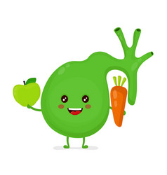 strong healthy happy gallbladder with apple vector image vector image