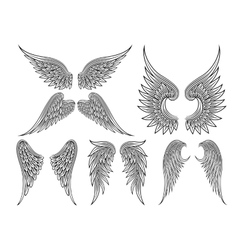 heraldic wings or angel vector image vector image
