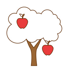 apple tree isolated icon vector image