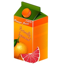 Orange juice in carton box vector