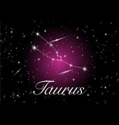 taurus zodiac constellations sign vector image