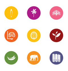 wild tropic icons set flat style vector image