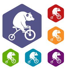 bear on a bike icons set vector image