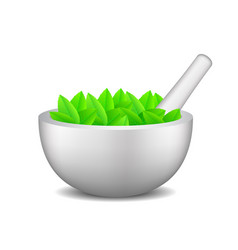 mortar with pestle and leaves vector image vector image