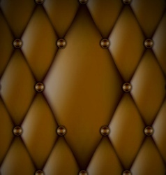 Luxury Brown Leather vector image
