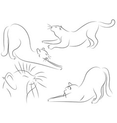 set of black line cats stretch oneself on white vector image